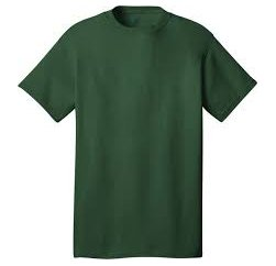 Glassy Green Basic Blank T Shirt Suppliers